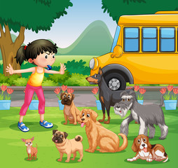 Girl training dogs in the park
