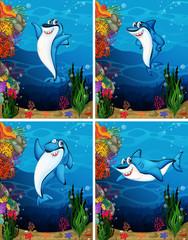 Aluminium Prints Submarine Shark swimming under the sea