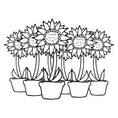 black and white cartoon sunflowers