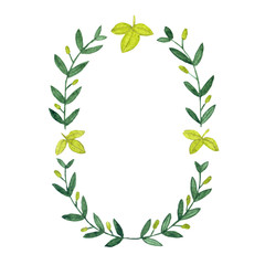 Watercolor olive wreath. Isolated illustration on white background