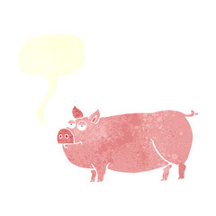 retro speech bubble cartoon huge pig