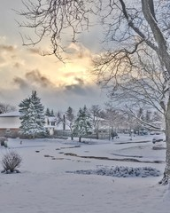 Winter in canadian suburbia