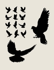 Dove Flying Silhouettes, art vector design