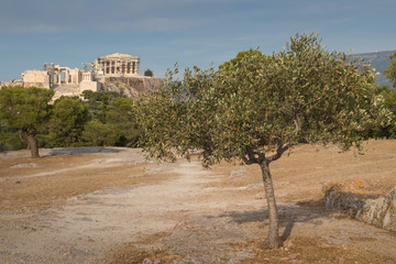 View on Acropolis, Athens, Greece