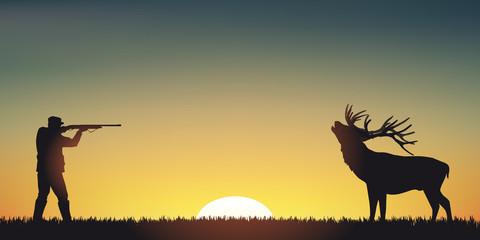 CHASSE Cerf - Coucher de soleil