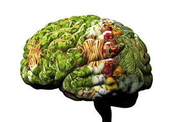 human brain made out of fruit and vegetables.