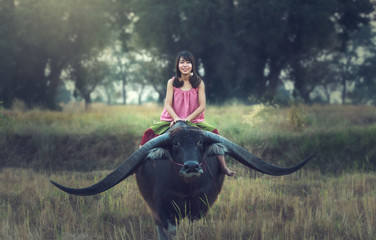 Asian woman (Thai) farmer with a buffalo in the field (Vintage color).