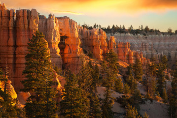 Morning Light at Bryce Canyon National Park, Utah, USA Fotoväggar