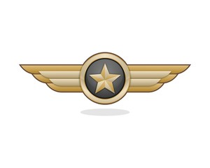 Wing Star