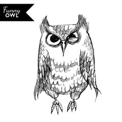 funny owl character