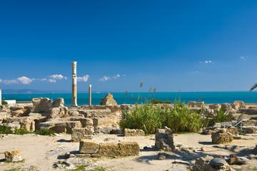 Tunisia. Ancient Carthage. Fragment of Antonine Baths - large column from frigidarium on left side