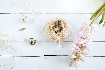 Easter background with quail eggs in nest and pink hyacinth