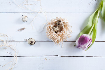 Easter background with quail eggs in nest and pink tulip