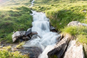 Wildwasser durch die Bergwiese