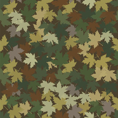 Camouflage in the form of fallen maple leaves.