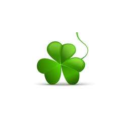 Three clover leaf on white background, vector illustration for St. Patrick's day. Isolated object