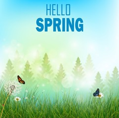 Spring background with flowers and butterflies in meadow and pine trees