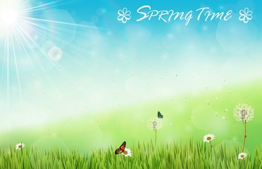 Spring background with butterflies and dragonfly in meadow