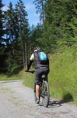 Mountainbiker im Wald_2015