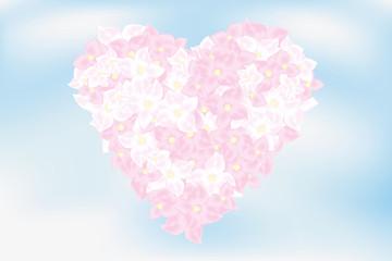Heart of hortensia flowers