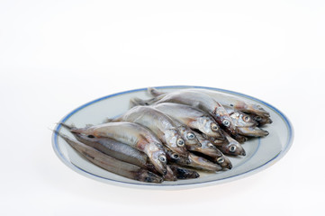 Capelin on a plate isolated on white background