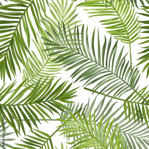 buy tropical leaf wallpaper