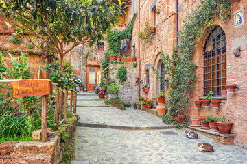 Fotomurales - Old town Tuscany Italy