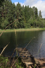 Nature in Russia, year 2015