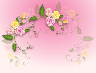 Light pink Background with roses