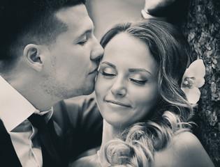 Groom kiss bride's cheek. bride and groom