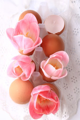 Spring Easter decoration tulips in eggshells on a white background delicate lace
