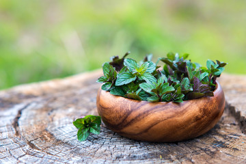 Mint  in small basket on natural wooden background, peppermint
