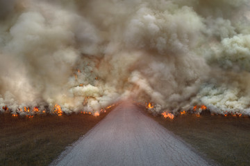 Natural disaster with big fire on the road