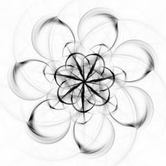 Monochrome Blüte
