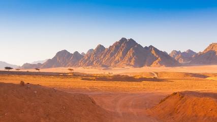 Wall Murals Desert Egypt desert