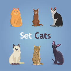 Collection of Cats and Dogs of Different Breeds. Vector Illustration Set. eps 10