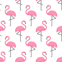 Flamingo seamless pattern on white background. Flamingo vector background design for fabric and decor.