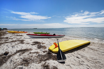 Kayaks and a surf board on a sandy beach of Honeymoon Island, Florida