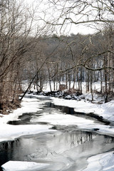Snow covered stream in rural Princetown, New York