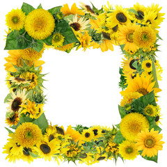 Square summer sunflowers frame