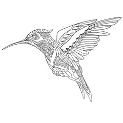 Zentangle stylized cartoon hummingbird, isolated on white background. Sketch for adult antistress coloring page. Hand drawn doodle, zentangle, floral design elements for coloring book.
