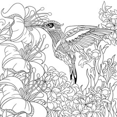 Zentangle stylized cartoon hummingbird flying around flowers full of nectar. Sketch for adult antistress coloring page. Hand drawn doodle, zentangle, floral design elements for coloring book.
