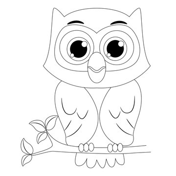 Coloring Book Outlined Owl