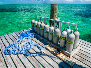 Gas for diving