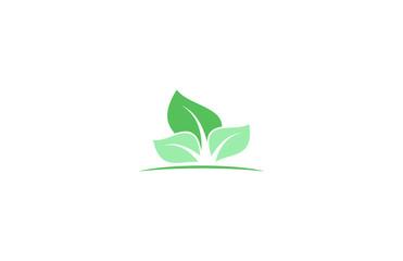 leaf eco green logo