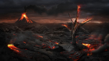 Fire tree in the volcanic landscape