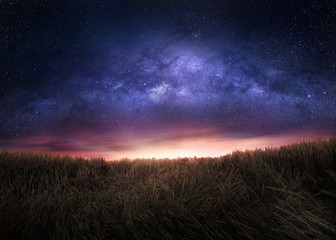 Night sky and the Milky Way above the field