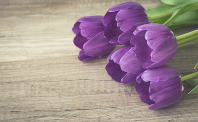 Bunch of purple tulips on wooden surface