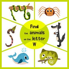 Funny learning maze game, find all 3 of cute wild animals to the letter , forest predator, the wolf, earthworm, and sea kit. Educational page for children. Vector