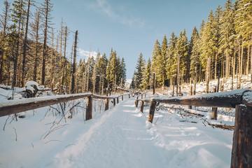 Walkpath to Morskie Oko lake, Czarny Staw and Rysy in High Tatra Mountains, Poland